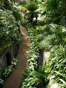 Feng Shui Pathway through garden - photo RannaΠ2008